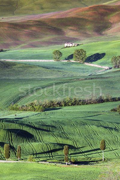 Stock photo: Tuscany spring landscape