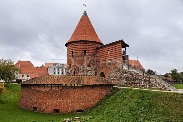 Stockfoto: Kasteel · bewolkt · ochtend · gebouw · architectuur · gothic