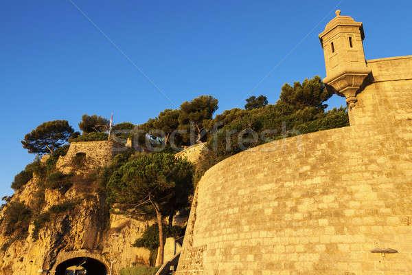砦 モナコ ツリー 市 壁 スカイライン ストックフォト © benkrut