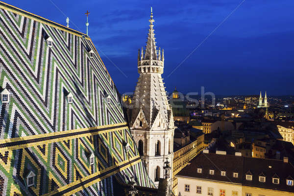 Telhado catedral Viena Áustria céu viajar Foto stock © benkrut