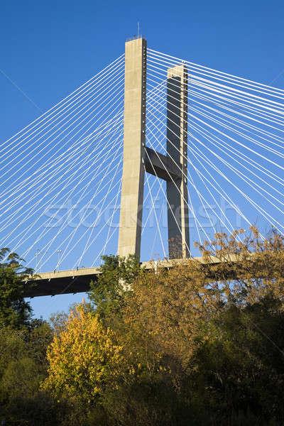 橋 サバンナ グルジア ストックフォト © benkrut