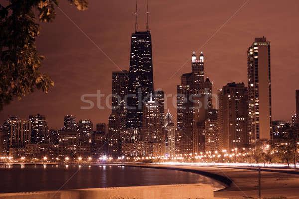 Night in Chicago Stock photo © benkrut