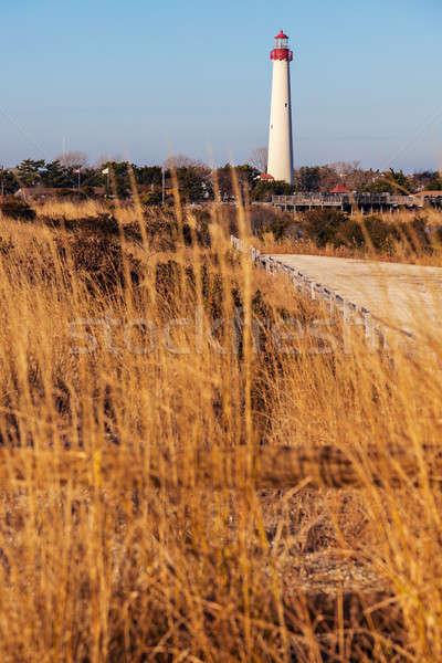 Cape May Lighthouse Stock photo © benkrut