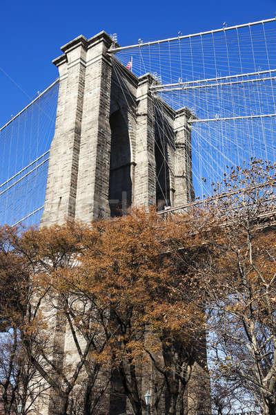 Brooklyn Bridge in New York Stock photo © benkrut