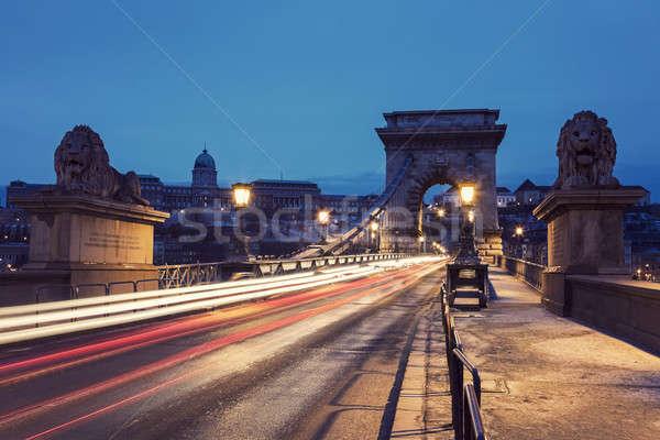 Chain bridge and Royal Palace  Stock photo © benkrut