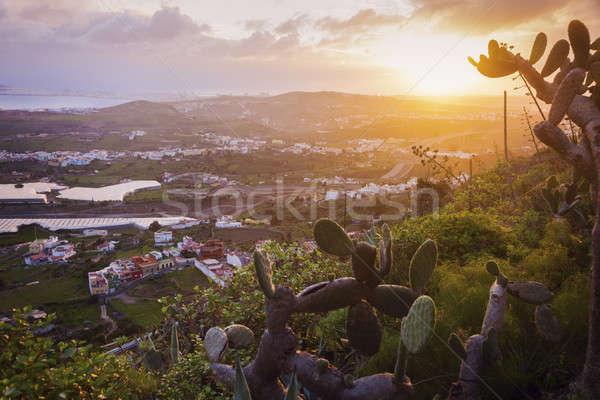 Gran Canaria panorama at sunrise Stock photo © benkrut