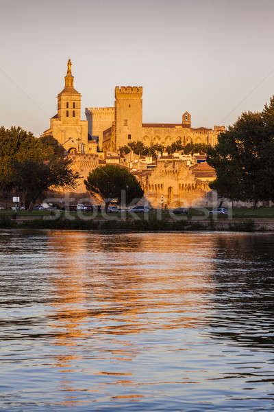 Avignon Cathedral Stock photo © benkrut