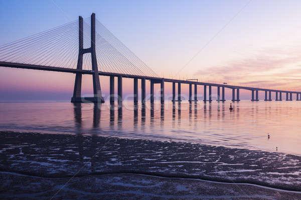 Vasco da Gama Bridge in Lisbon Stock photo © benkrut