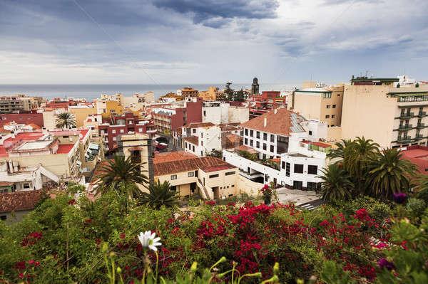 Panorama of Puerto de la Cruz Stock photo © benkrut