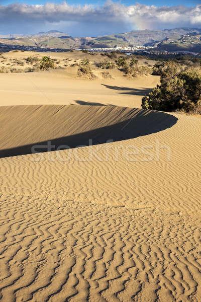 песок Канарские острова Испания морем Сток-фото © benkrut