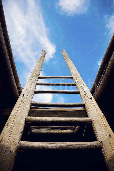 Ladder - the symbol of the career steps   Stock photo © benkrut