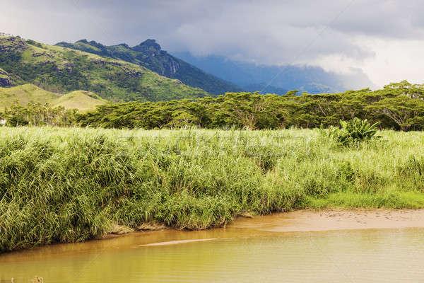 Fiji panorama isola albero verde Foto d'archivio © benkrut