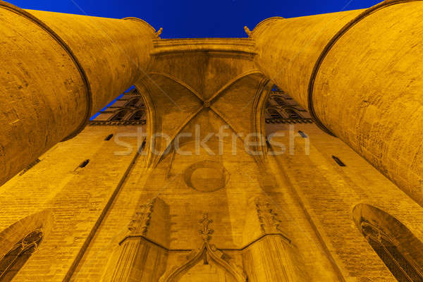 Montpellier Cathedral at night Stock photo © benkrut