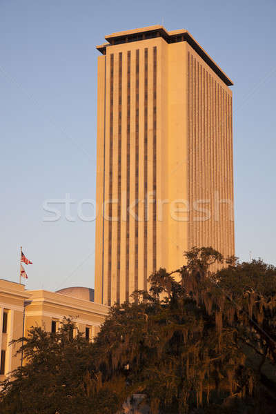 State Capitol Building in Tallahassee Stock photo © benkrut