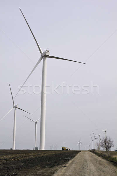 Wind Farm Stock photo © benkrut