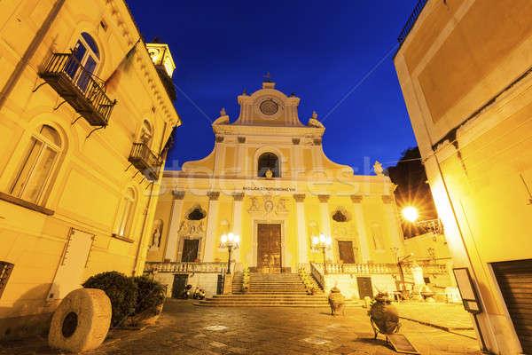Bazilika kilise mavi gece ufuk çizgisi kule Stok fotoğraf © benkrut