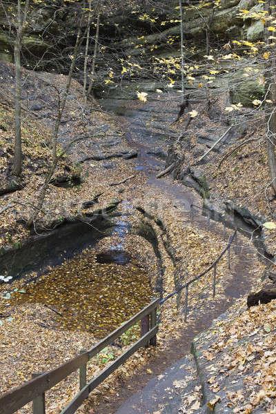 Düşmek kaya park Illinois ABD Stok fotoğraf © benkrut