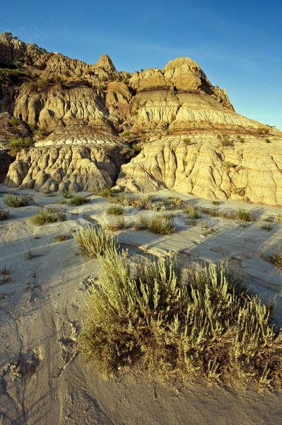 Zonsondergang park North Dakota Stockfoto © benkrut