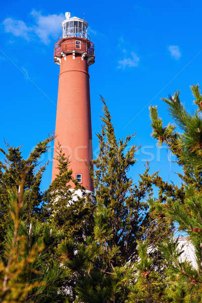 Phare New Jersey USA Voyage brique parc Photo stock © benkrut