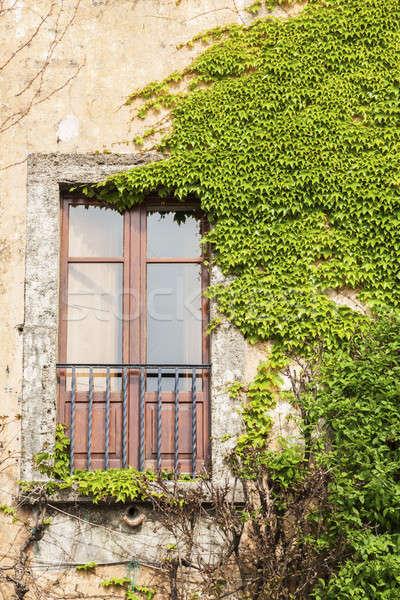 Un altro Italia finestra costruzione verde viaggio Foto d'archivio © benkrut