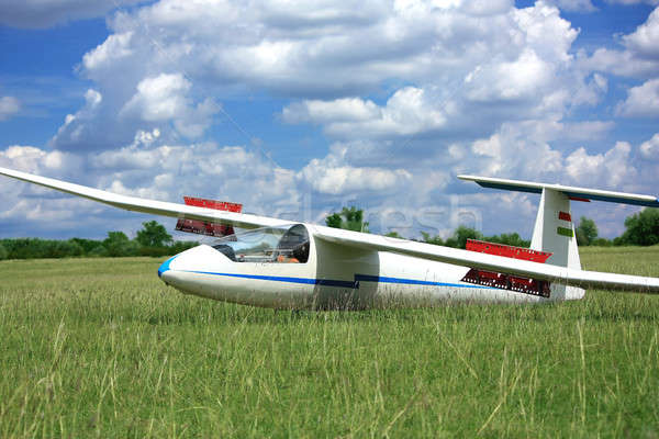 White glider plane on grass Stock photo © berczy04