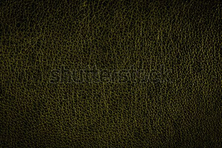 Green leather wallpaper, background Stock photo © berczy04