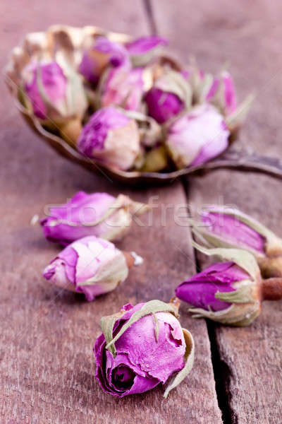 Stock fotó: Aszalt · rózsa · virág · virágok · természet · levél