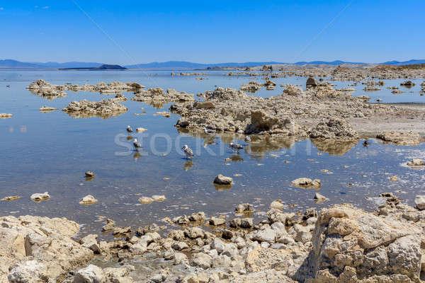 Lago costa California cielo naturaleza belleza Foto stock © Bertl123