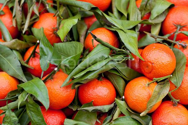 オレンジ 葉 ローカル ストックフォト © Bertl123