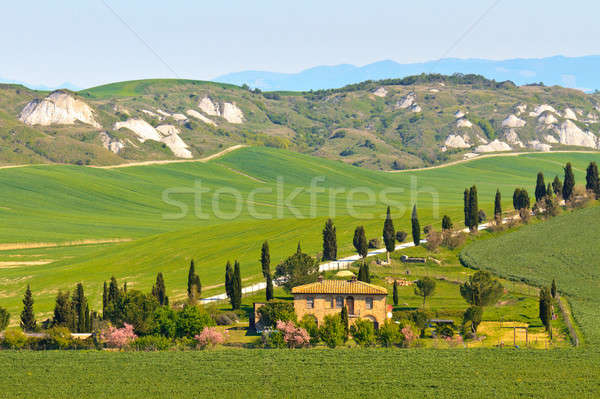 Typical Tuscany landscape view Stock photo © Bertl123