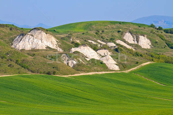 Crete Senesi - Tuscan Landscape in Spring, Italy Stock photo © Bertl123