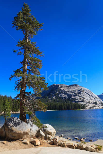Stockfoto: Yosemite · national · park · meer · Californië · water