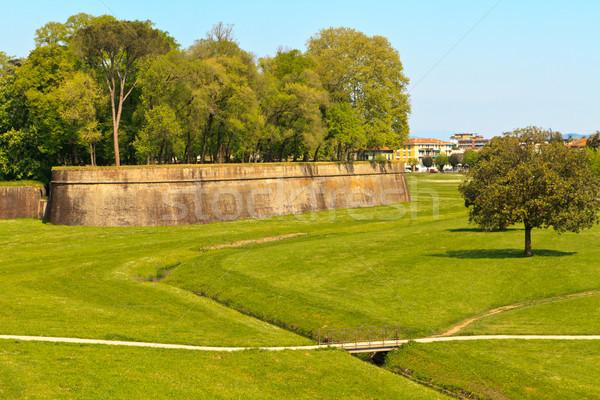 Város fal tavasz Toszkána Olaszország fű Stock fotó © Bertl123
