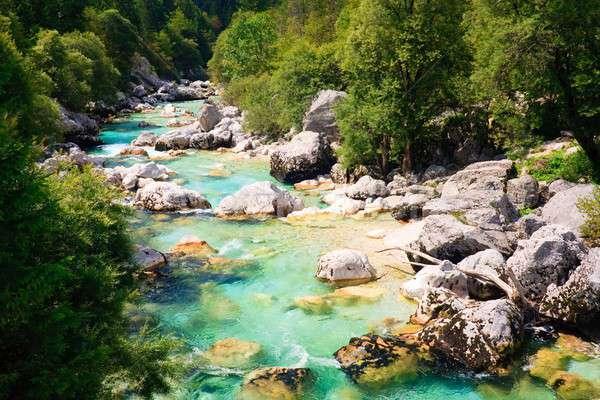 Zümrüt alpine nehir Slovenya bahar spor Stok fotoğraf © Bertl123