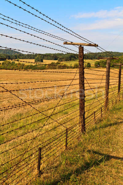 Iron Curtain Remains Stock photo © Bertl123