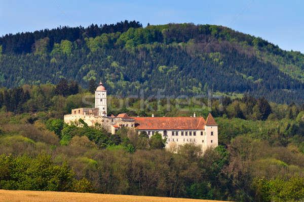 Castello museo abbassare Austria uno migliore Foto d'archivio © Bertl123