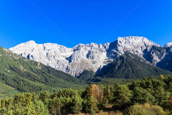Beautiful Mountain Landscape Stock photo © Bertl123