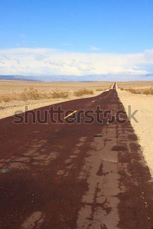 Long desert road Stock photo © Bertl123