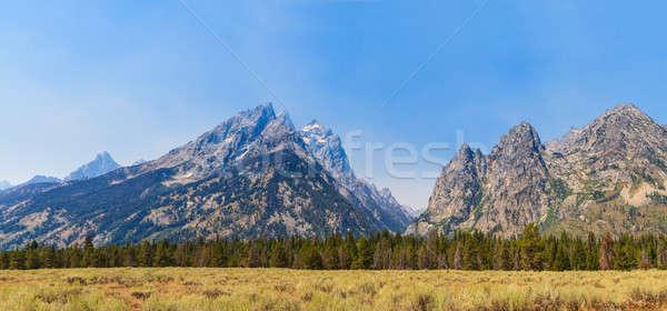 Parque panorama montana Wyoming árbol Foto stock © Bertl123