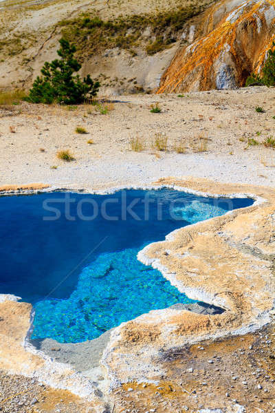Yellowstone National Park, Blue Star Spring in the Upper Geyser  Stock photo © Bertl123