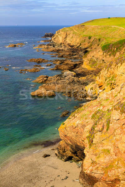 Hagedis punt cornwall Verenigd Koninkrijk strand zomer Stockfoto © Bertl123