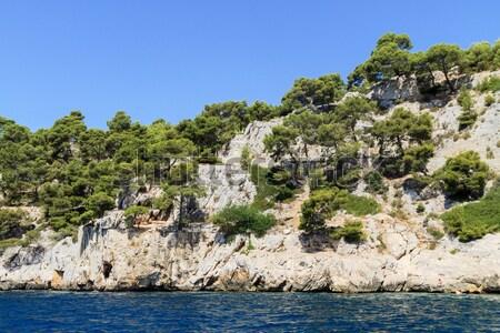 Stok fotoğraf: Sahil · güney · Fransa · ağaç · doğa · manzara