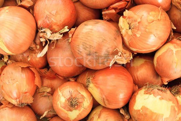 Soğan yerel pazar durmak bahar Stok fotoğraf © Bertl123