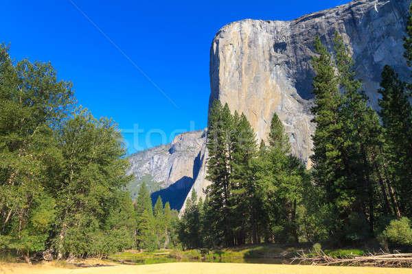 California niebo wody drzewo krajobraz Zdjęcia stock © Bertl123