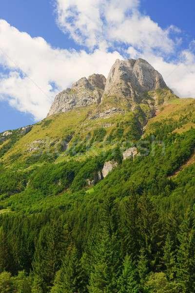 Dağ alpler gökyüzü çim güzellik yaz Stok fotoğraf © Bertl123