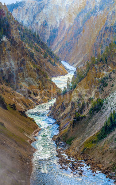The Grand Canyon of the Yellowstone National Park, Wyoming Stock photo © Bertl123
