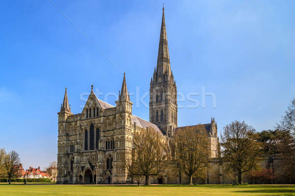 Salisbury Cathedral Front view and park on sunny day, South Engl Stock photo © Bertl123