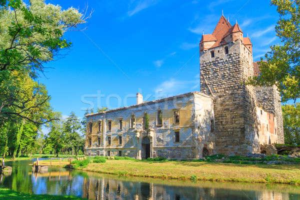 Castelo ruínas Áustria água natureza tijolo Foto stock © Bertl123