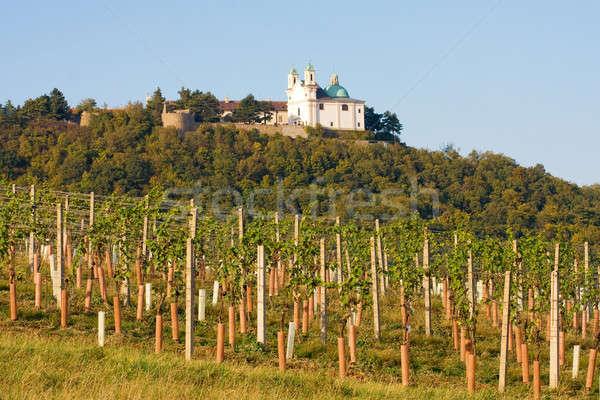 Leopoldsberg seen from wine yard, Vienna Stock photo © Bertl123