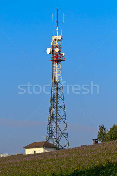 Communication Tower on rural field Stock photo © Bertl123